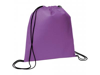 Promotional Giveaway Bags | The Evergreen Drawstring Cinch Backpack Purple